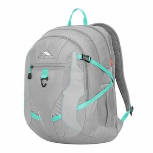 High Sierra Aggro Ultimate Backpack Silver Unisex